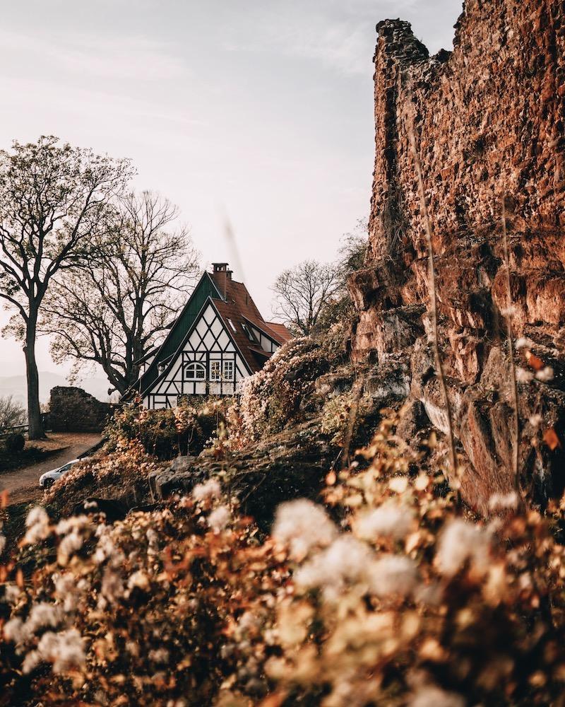 Burgruine Hohnstein Urlaub im Harz