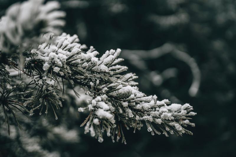 Sauerland Rothaarsteig Winter