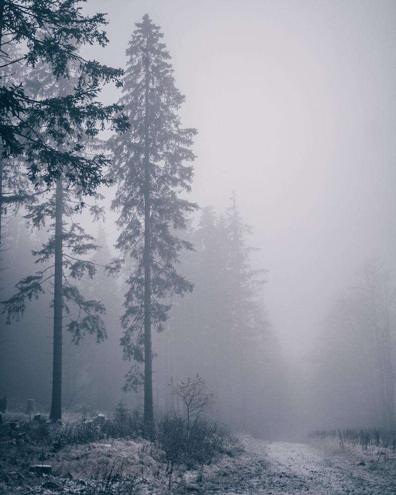 Sauerland Schnee November