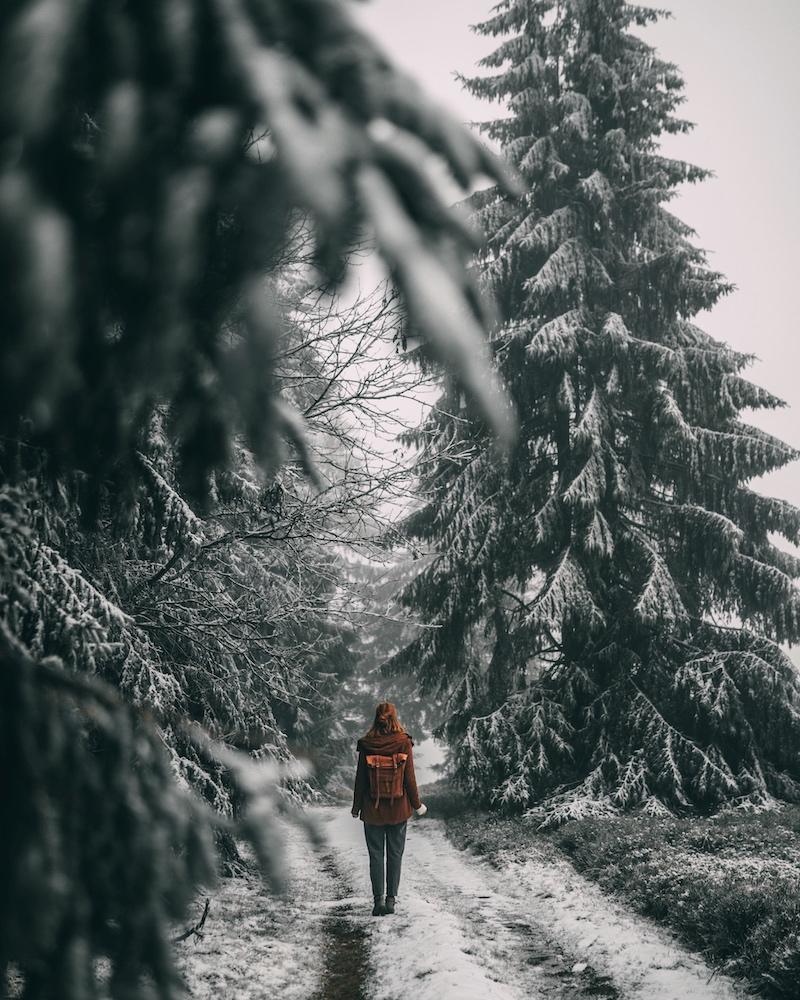 Sauerland Winter Niedersfelder Heide