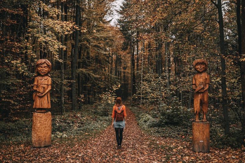 Urlaub im Harz Auerberg Wanderung