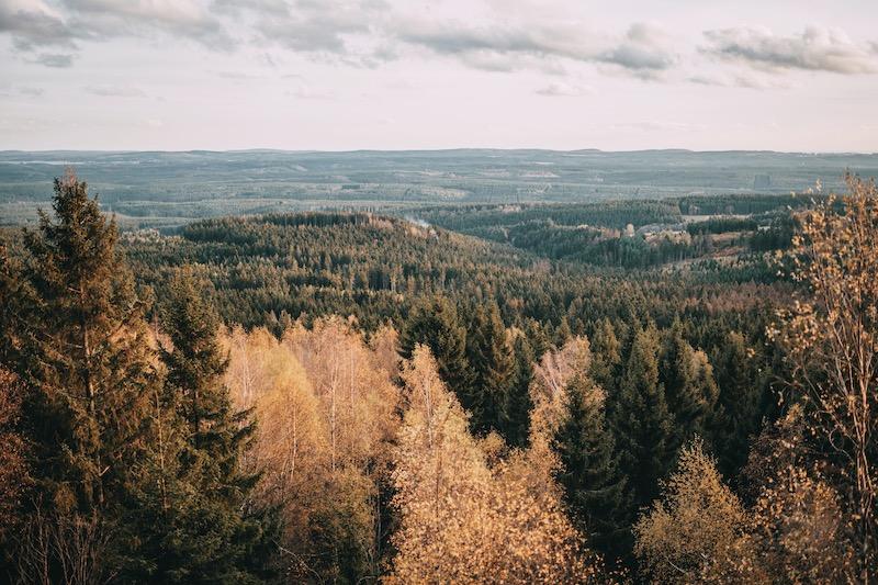 Urlaub im Harz Wanderung Brocken