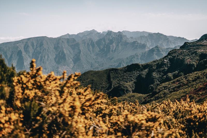 Madeira Tipps Paul da Serra