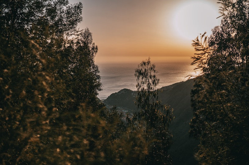Levada do Norte Madeira Urlaub