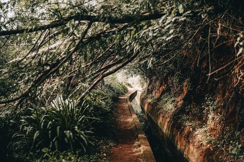 Madeira Urlaub Levada dos Tornos