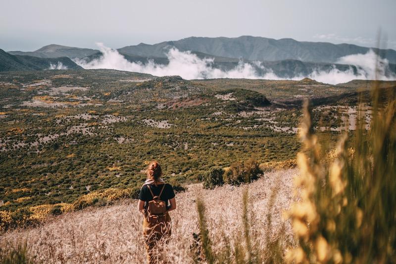 Madeira Urlaub Paul da Serra Ginster
