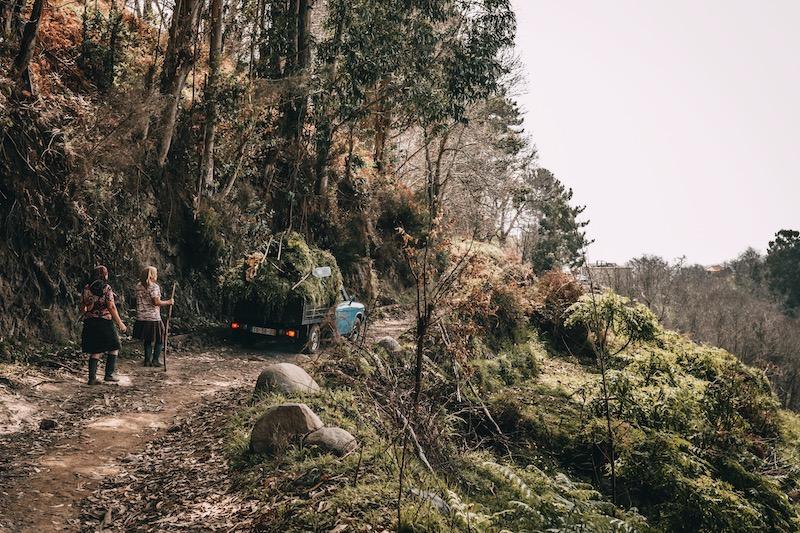 Madeira Wanderung Chão dos Terreiros