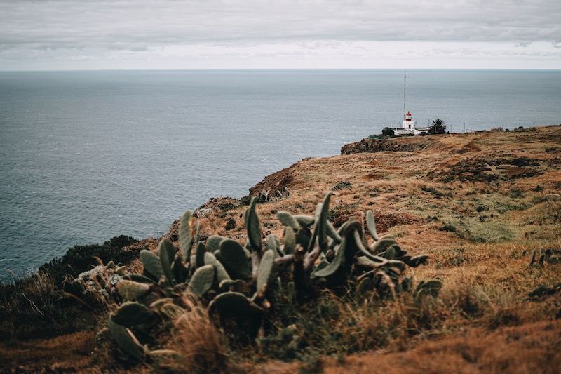 Ponta do Pargo Klippen Madeira Urlaub