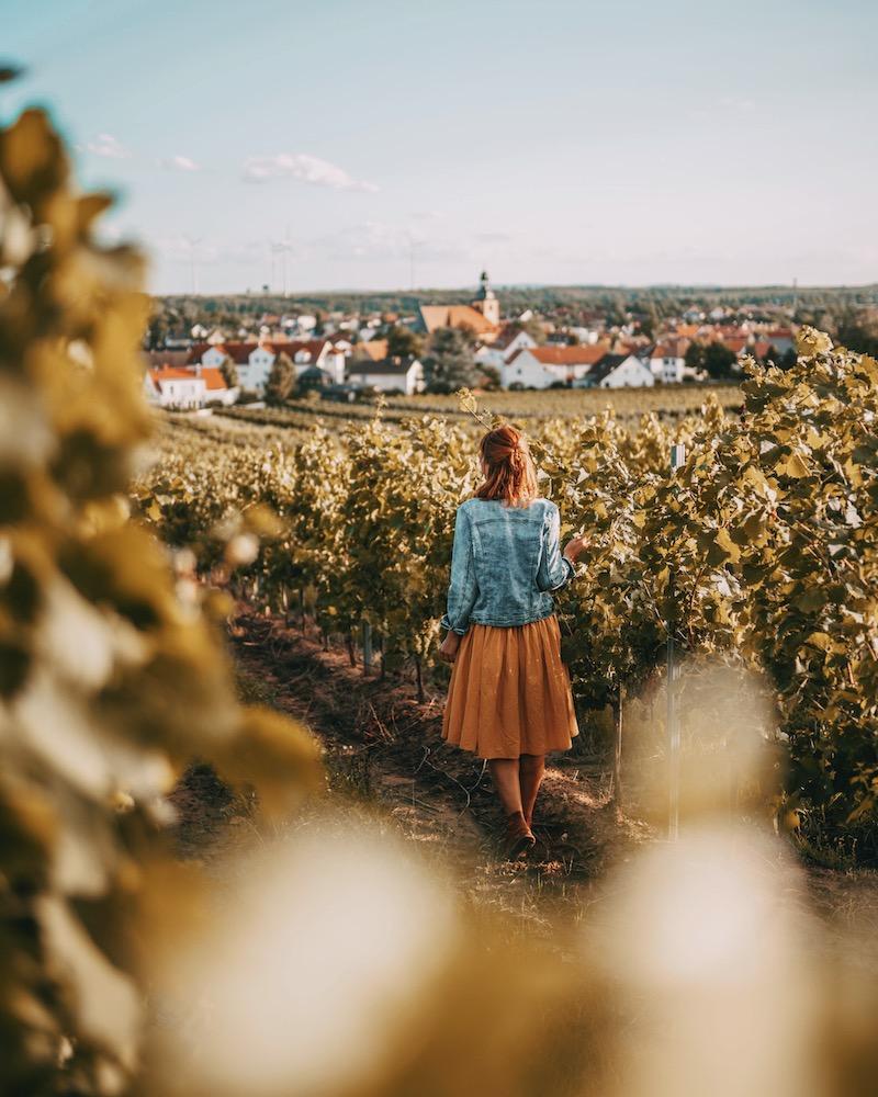 Urlaub in Deutschland Rheinhessen