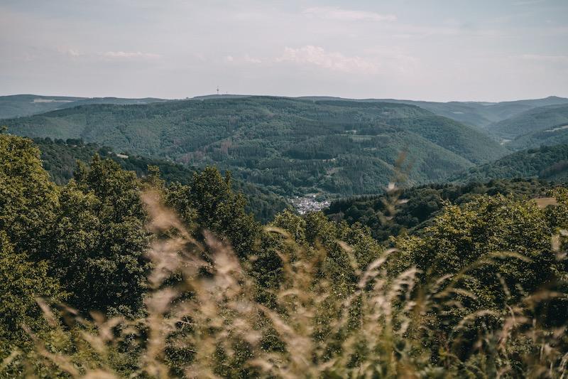 Ahrtal Ausblick Wanderung