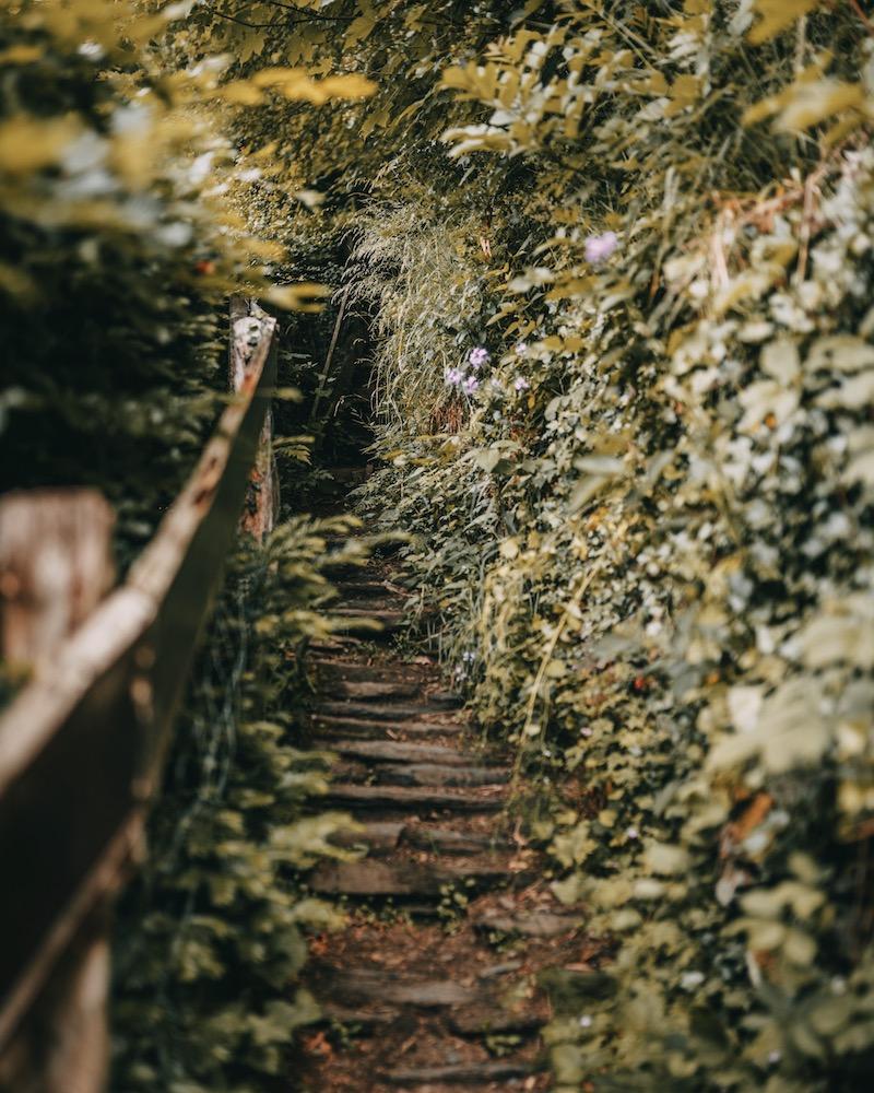 Panoramaweg Treppen