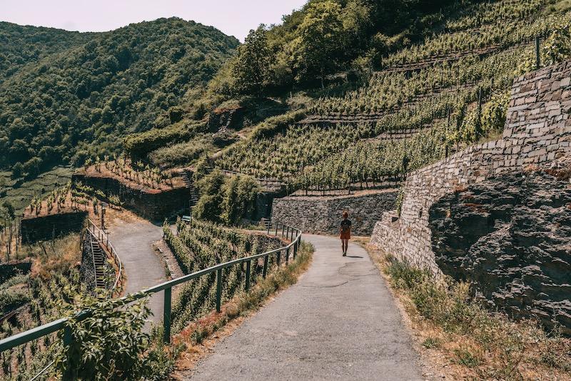 Rotweinwanderweg Wandern im Ahrtal