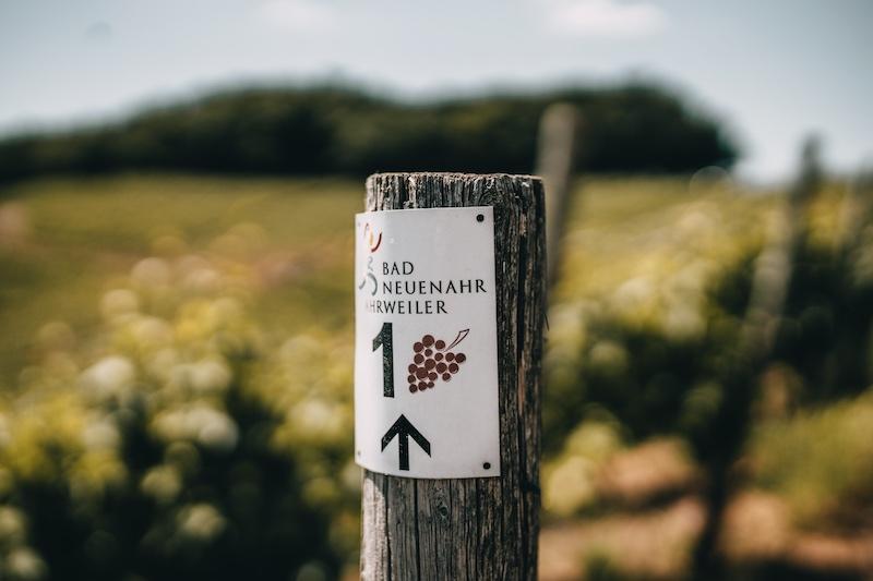 Wandern im Ahrtal Traubenpfad Nr. 1