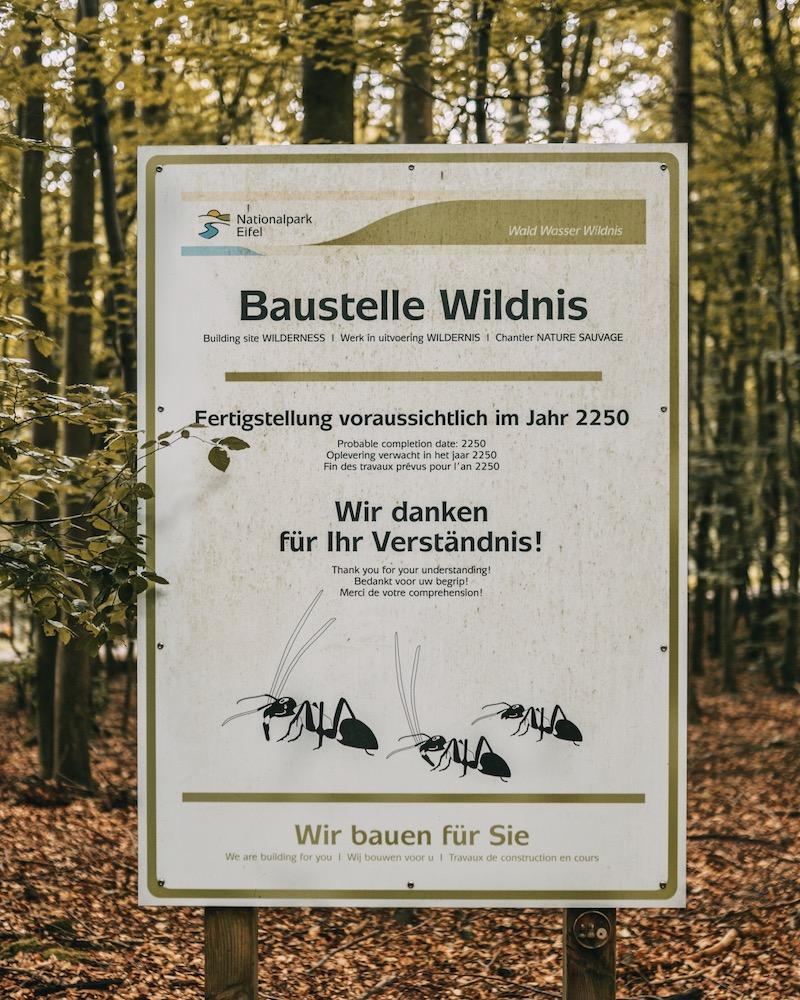 Baustelle Wildnis Wandern in der Eifel