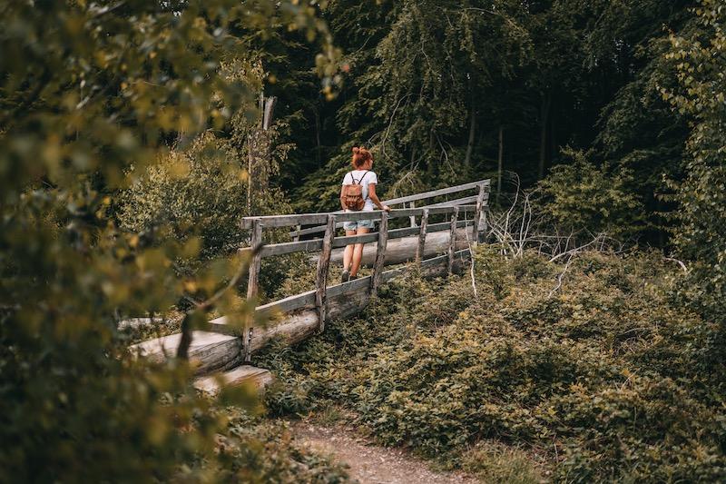 Camper Roadtrip Eifel Nationalpark