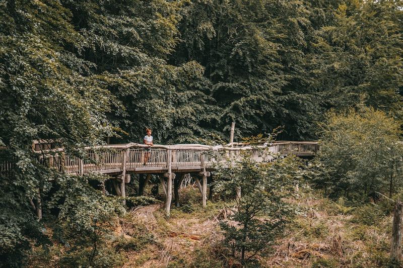 Camper Roadtrip Eifel wandern
