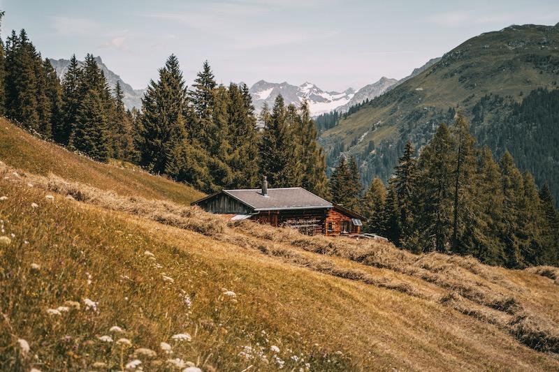 Davos Klosters im Sommer Almwiese