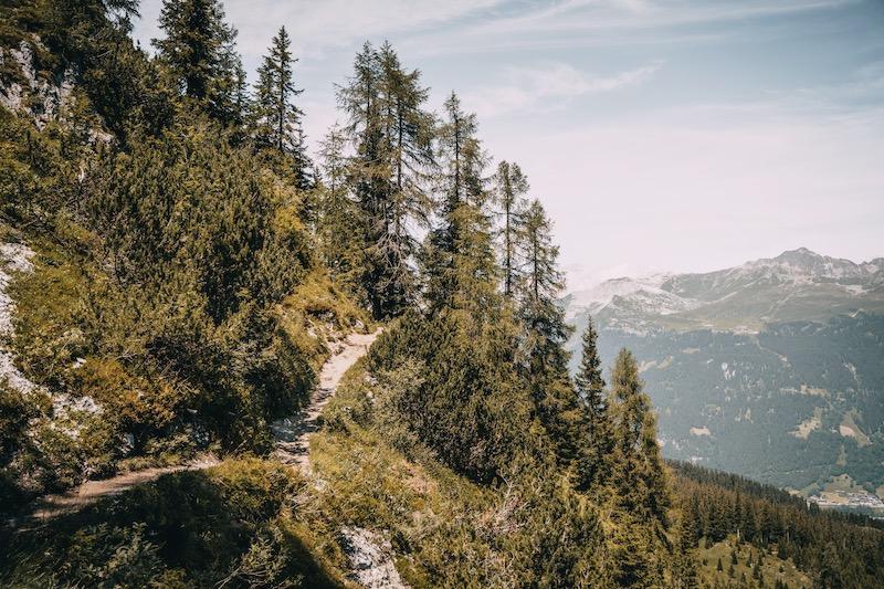 Gotschnaboden Wanderung Davos Klosters im Sommer