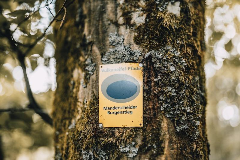 Manderscheider Burgenstieg Vulkaneifel