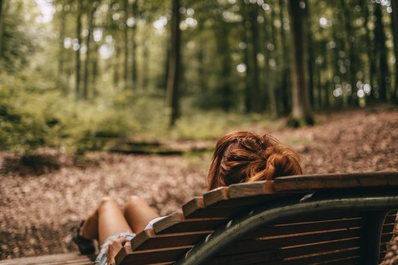 Nationalpark Eifel Camping