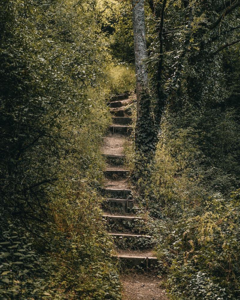 Treppen Monrealer Ritterschlag