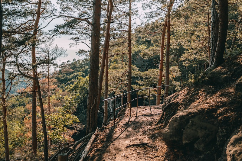 Wandern in der Eifel Buntsandsteinroute