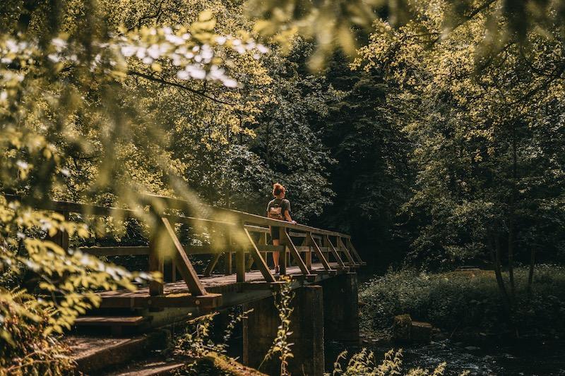 Wandern in der Eifel Manderscheid