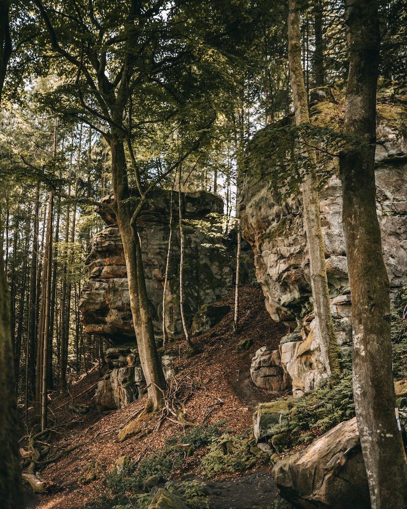 Wandern in der Eifel Naturpark Südeifel