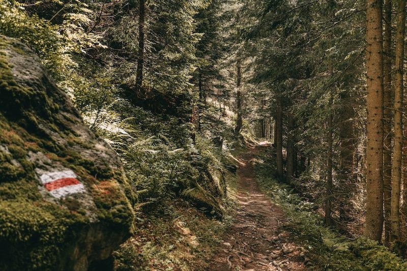Davos Klosters Wanderung Alp Sardasca