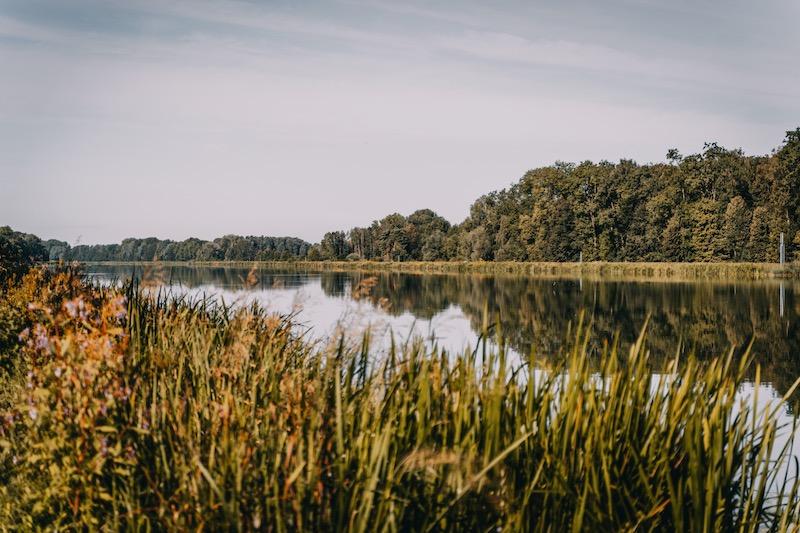 Donau Schwäbisches Donautal