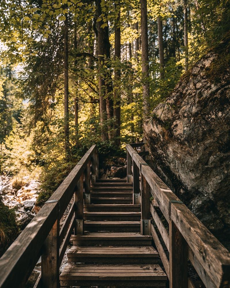 Zauberwald Berchtesgaden Sommer