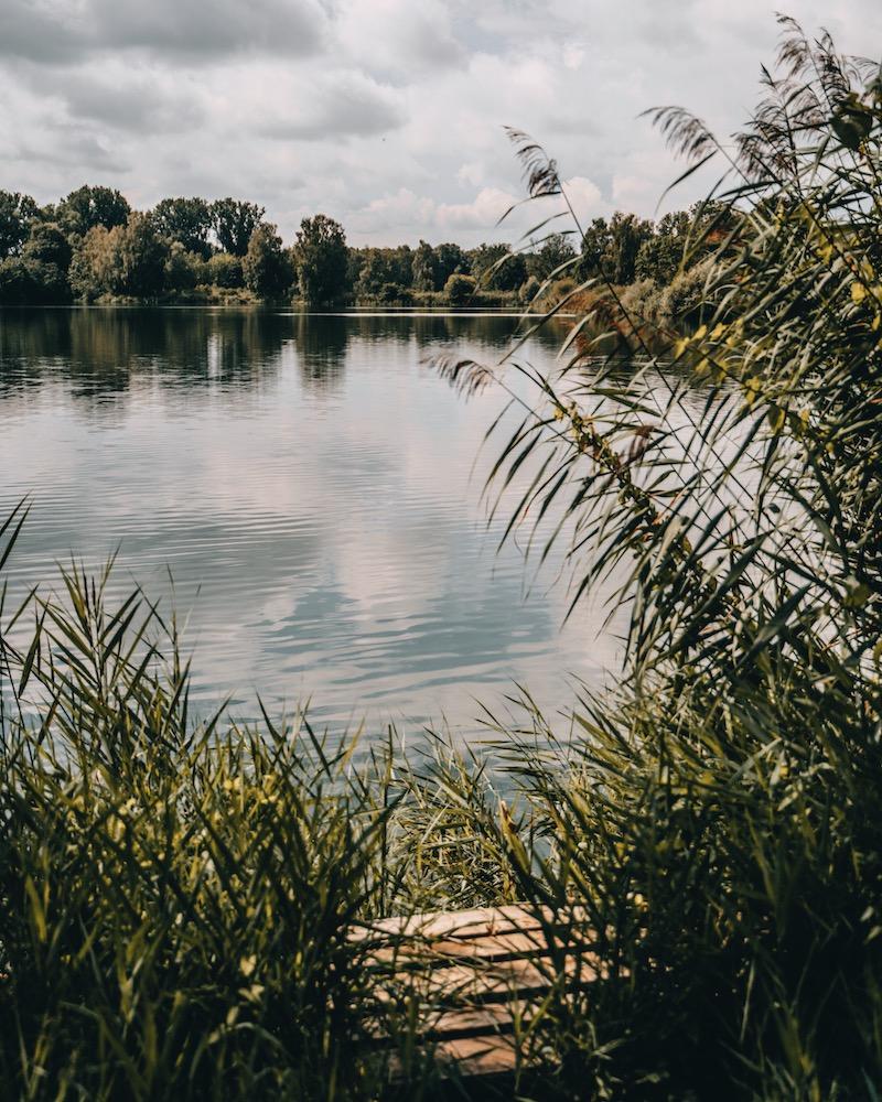 Donauwald Seen