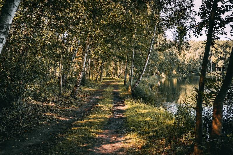 Donauwald Wanderung