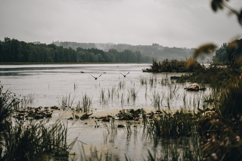 Donauwald Wanderweg Donau Stausee