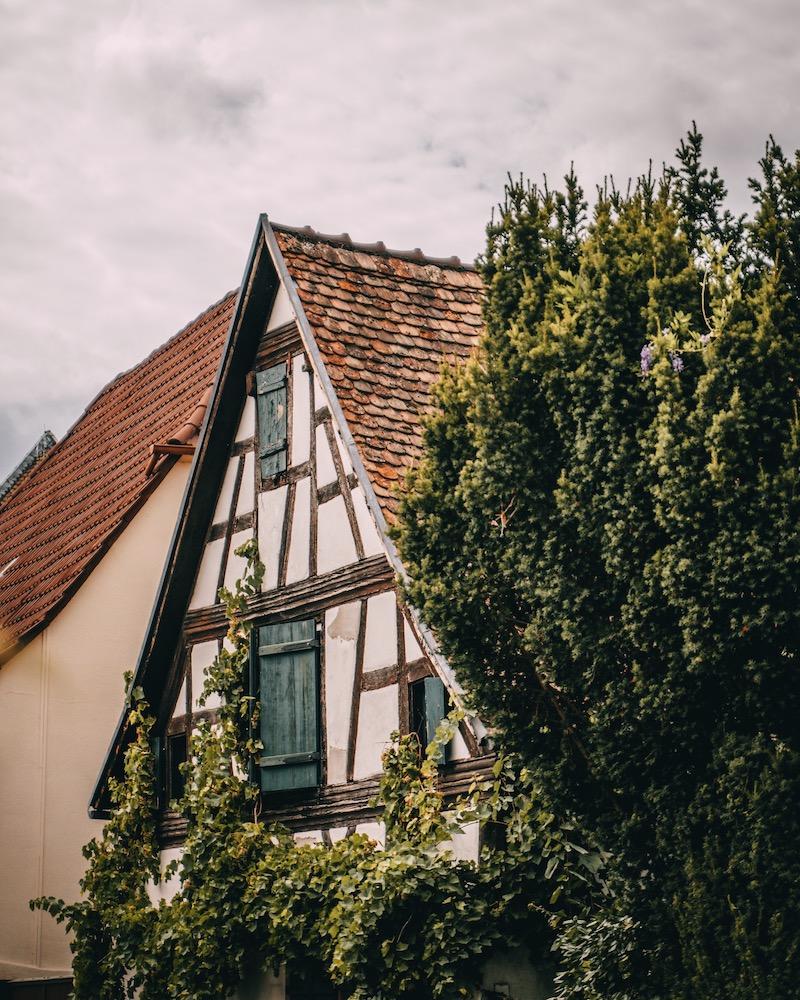 Pfalz Radweg