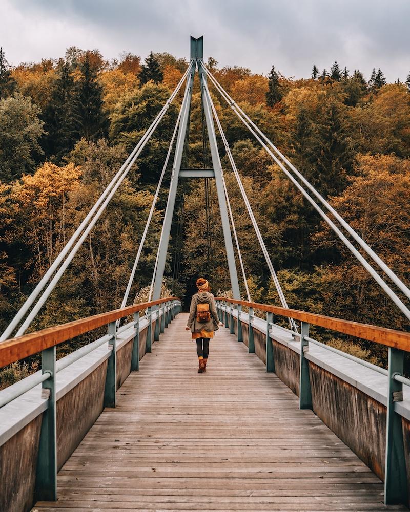 Donaubergland Herbst