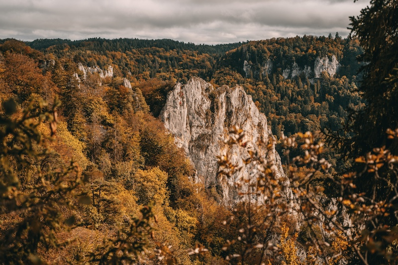 Donaufelsen Wanderweg