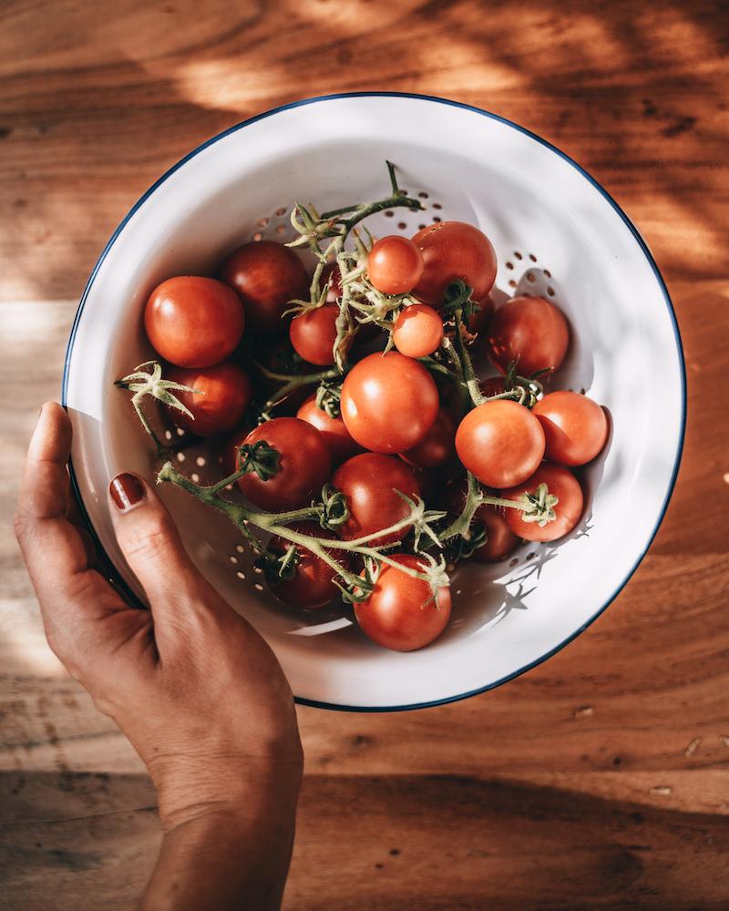 Tomaten Dachterrasse