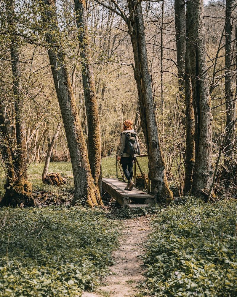 Wandern Eifel Mosel