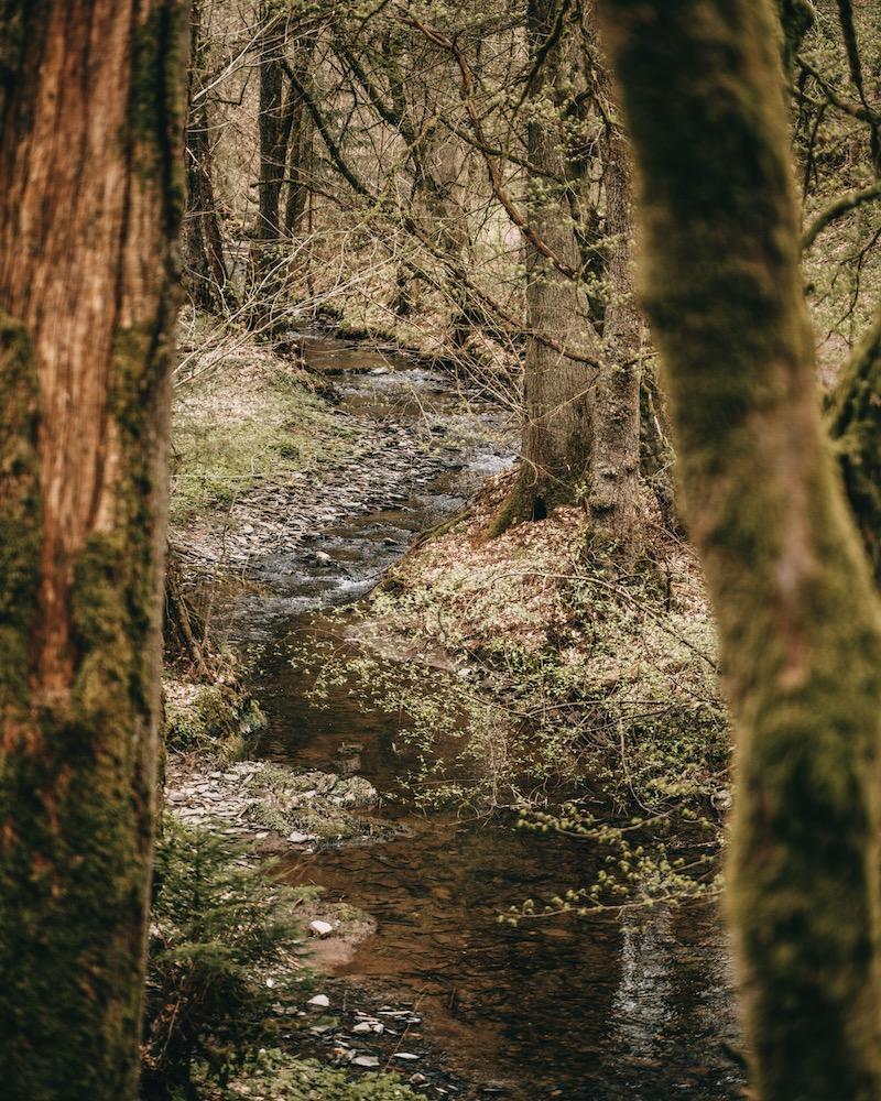 Wanderung Tal der wilden Endert