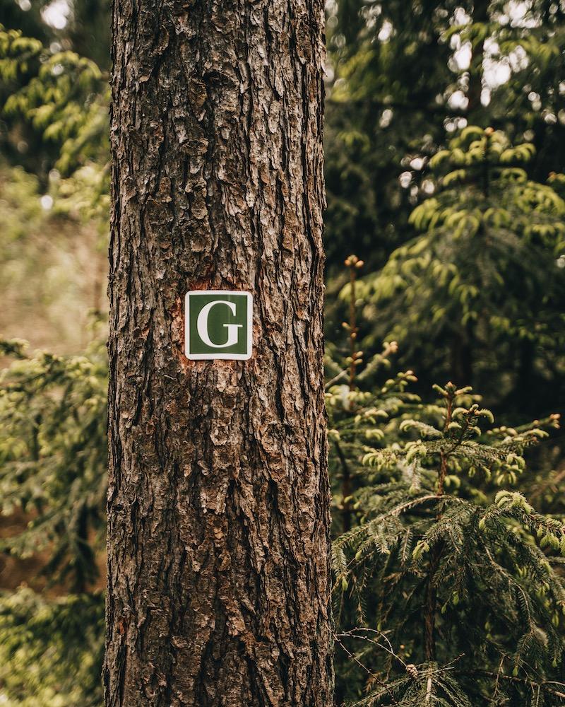 Goethe Erlebnisweg Wanderung