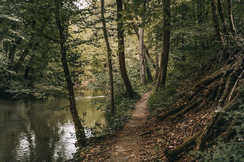 Wandern an der Mosel Elzbach Moselkern