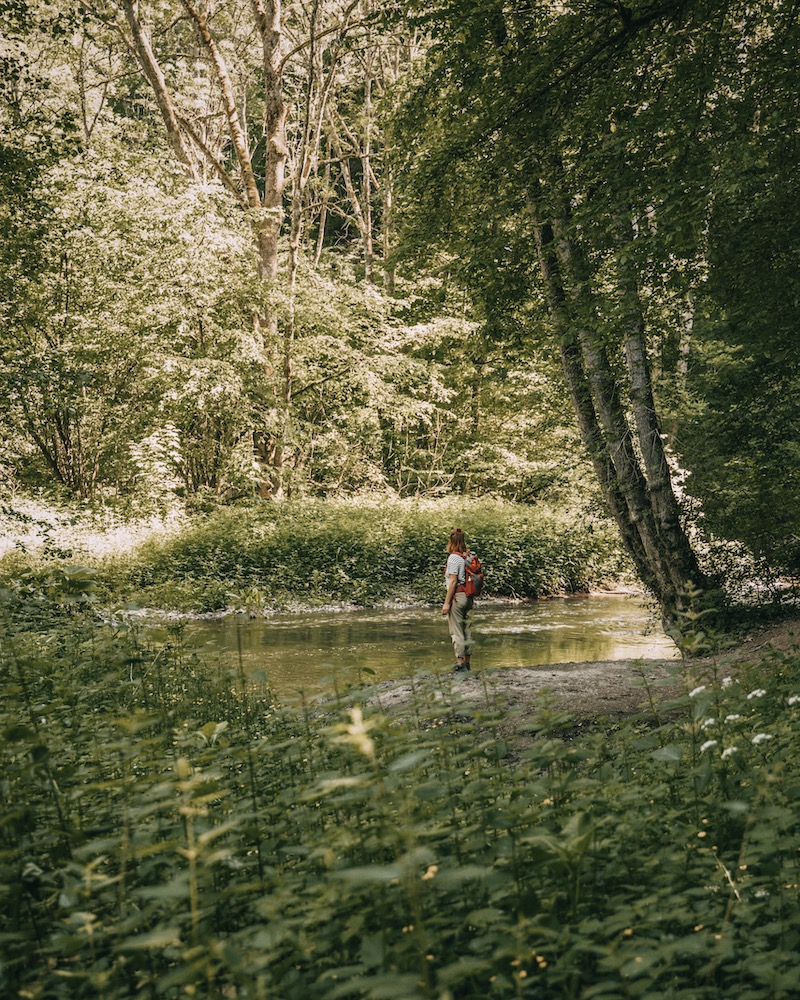 Wandern an der Mosel Elzbach
