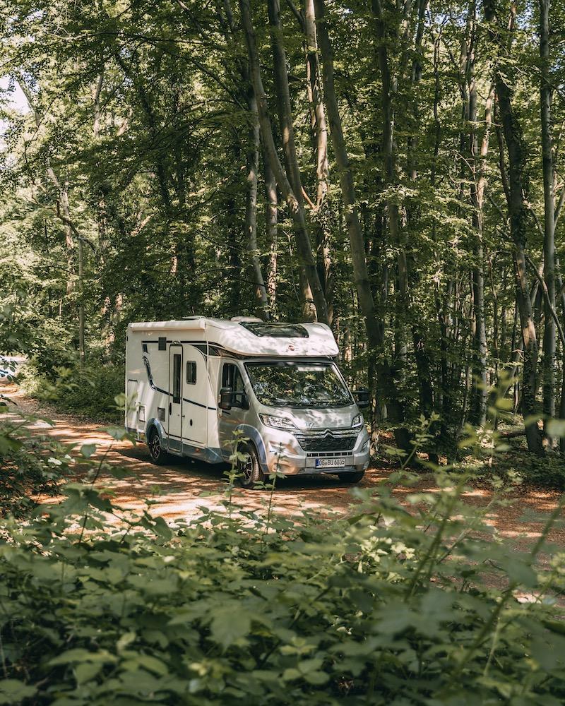 Wohnmobil Bürstner Wald