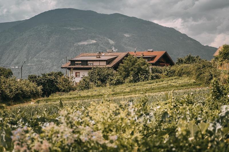 Bachguterhof Dorf Tirol