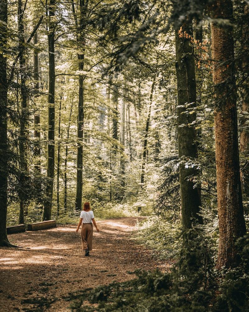 Remstal Naturatum Wanderweg