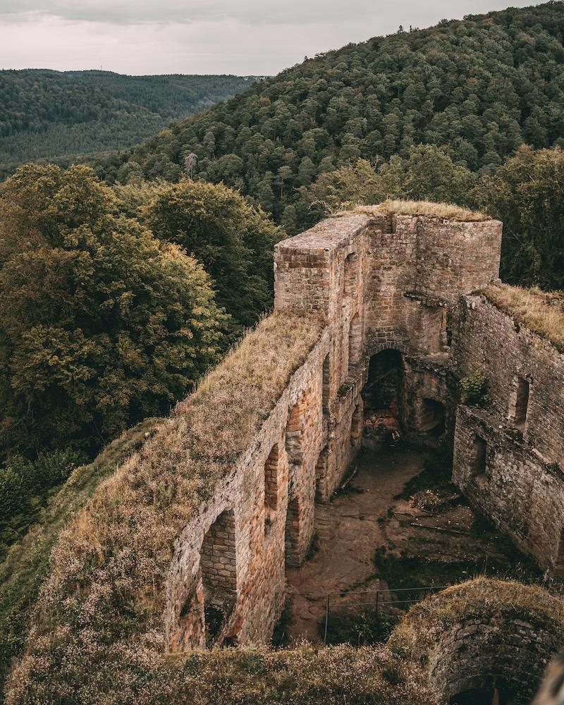 Burg Gräfenstein Pfälzer Wald
