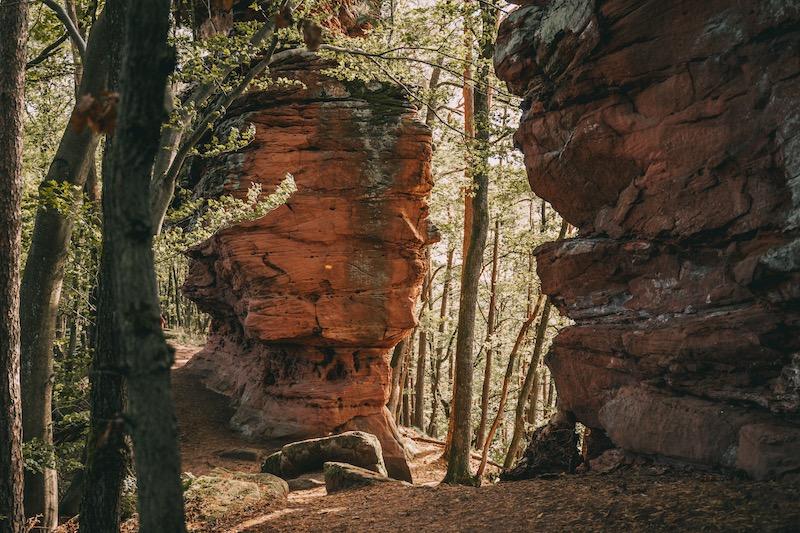 Geiersteine Wanderung Pfälzer Wald