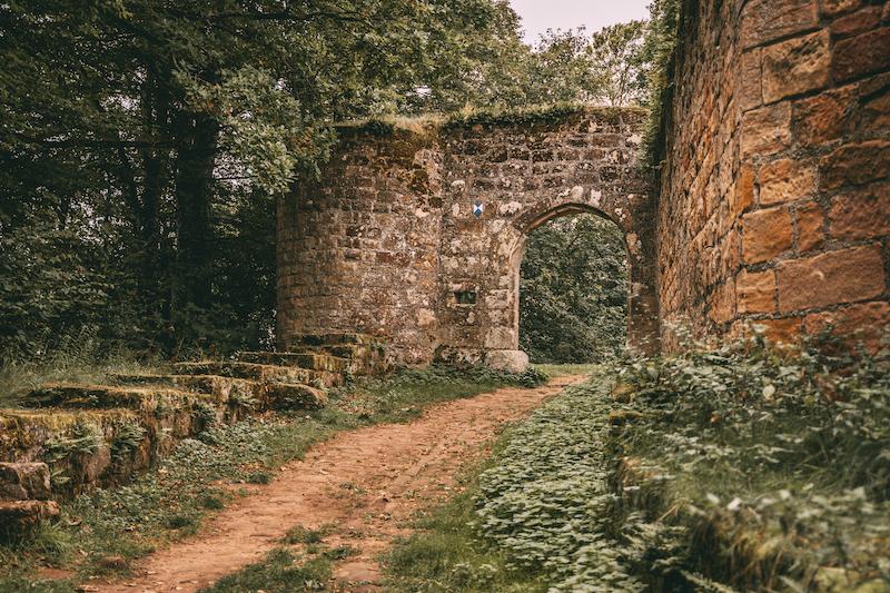 Pfälzer Wald Burg Gräfenstein