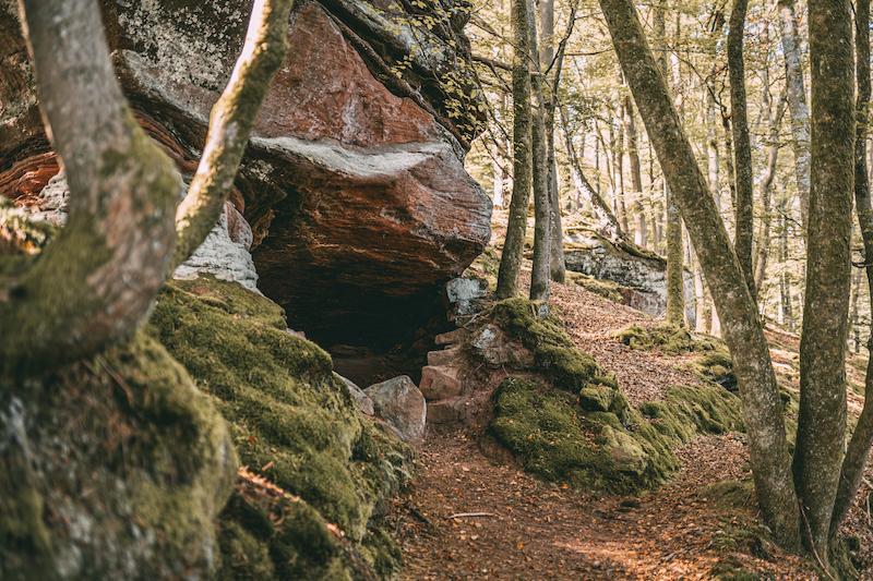 Pfälzer Wald Teufelstisch Wanderung